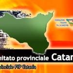 2014-fipcatania